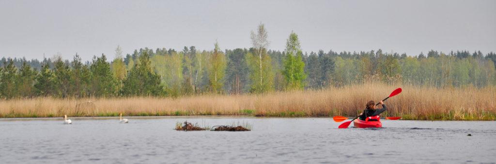 Kanoe kajaki Dūņezers Lilastes ezers jūra